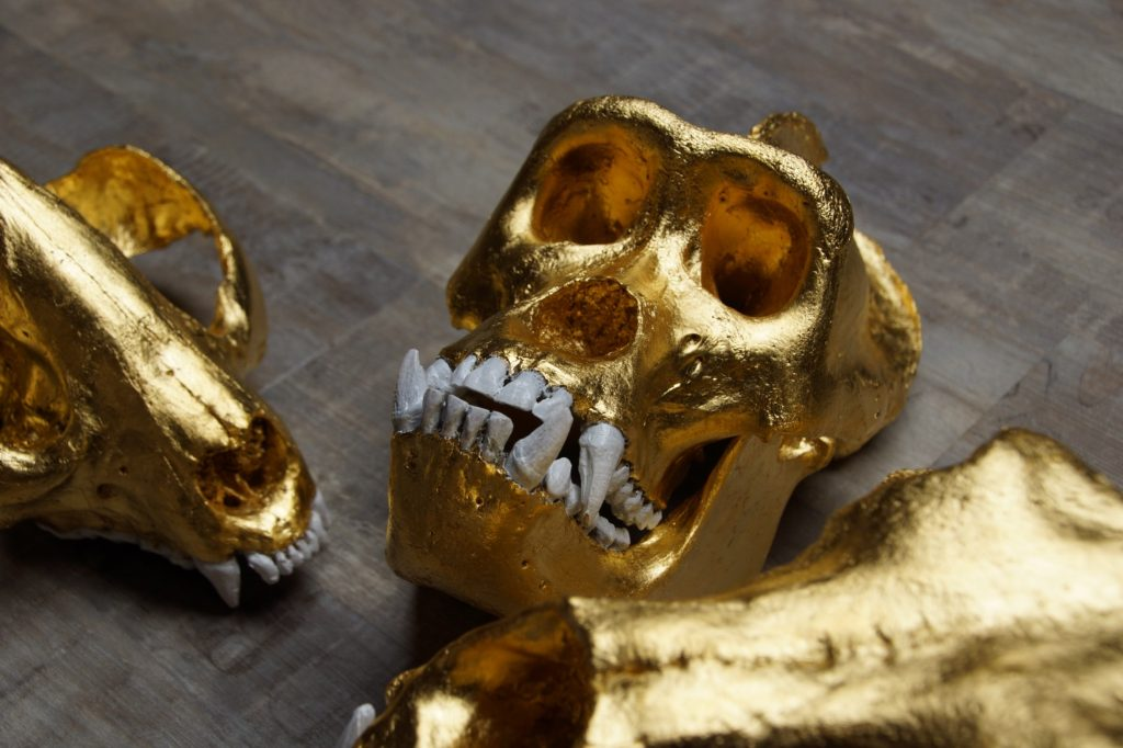 Gold Skulls from Rosewood's latest collection.